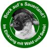 logo-bockaufssauerland